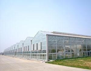 敏华农业生态园230KW光伏农业大棚项目